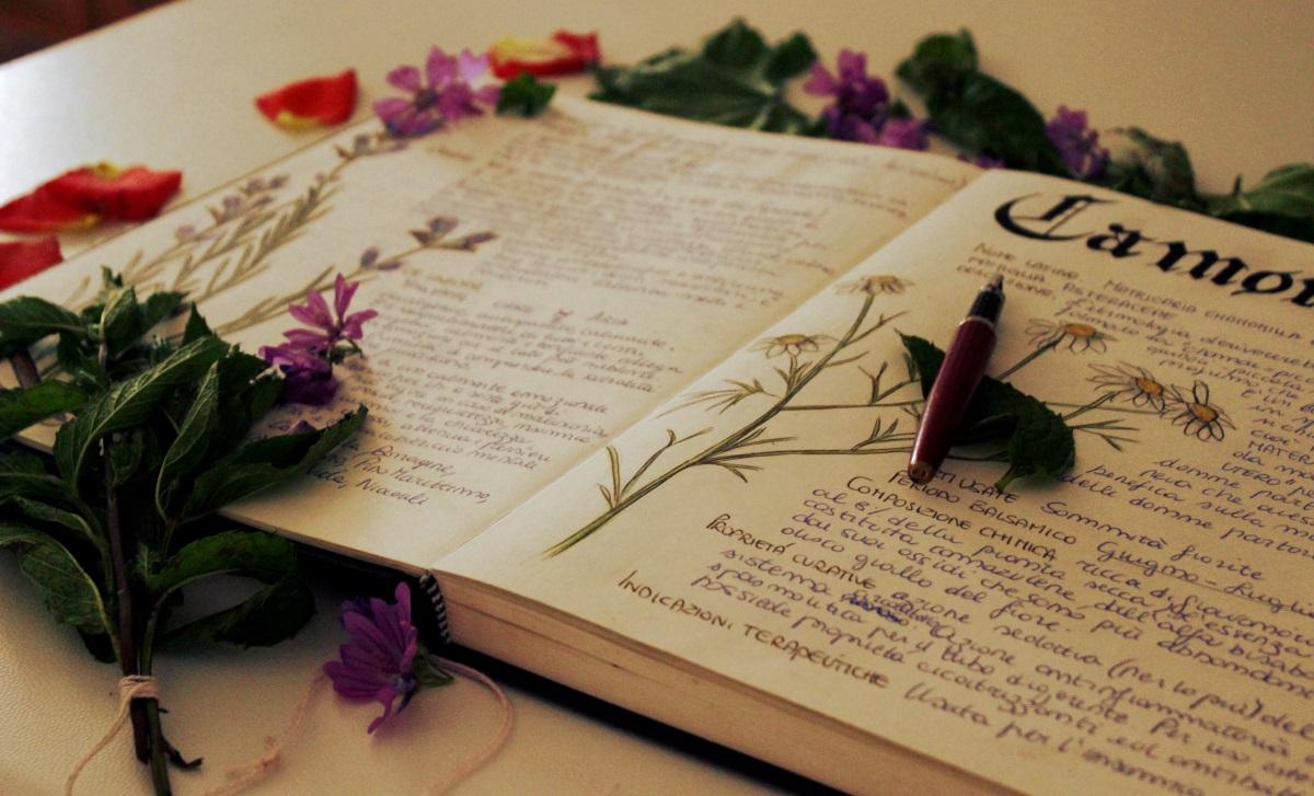 Realizzare un herbarium: come e perché.  La saggezza delle erbe